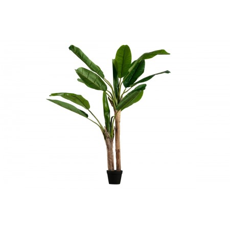 Banana plant artificial plant green