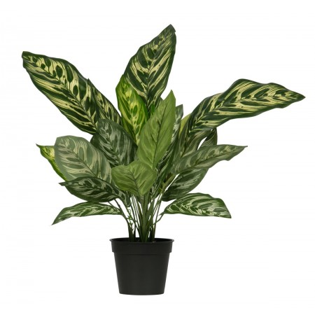 AGLAONEMA ARTIFICIAL PLANT GREEN 50CM