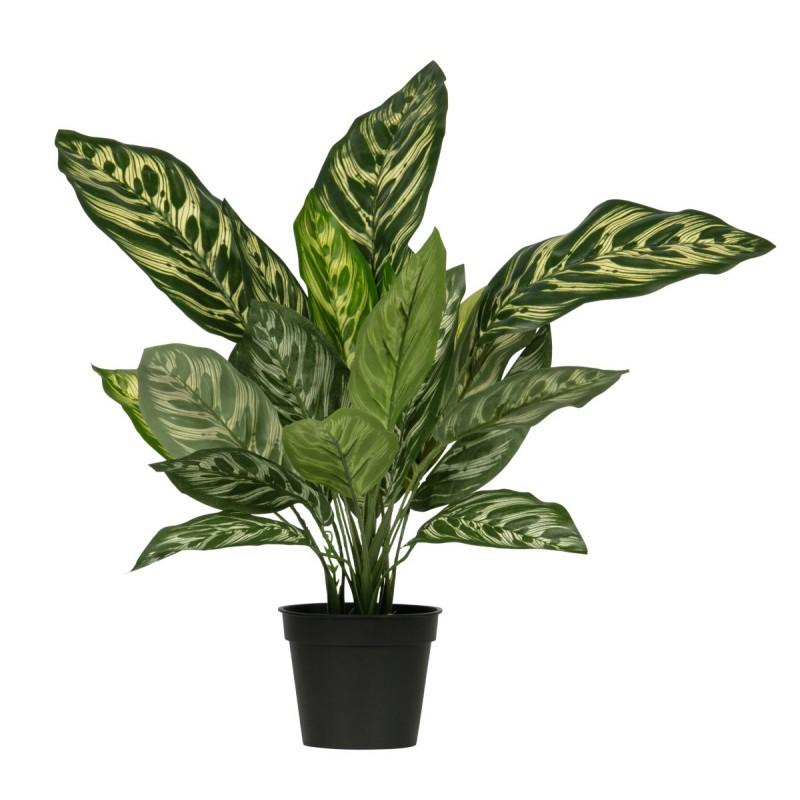 AGLAONEMA ARTIFICIAL PLANT GREEN 50CM